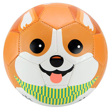 Corgi dog toddler soccer ball