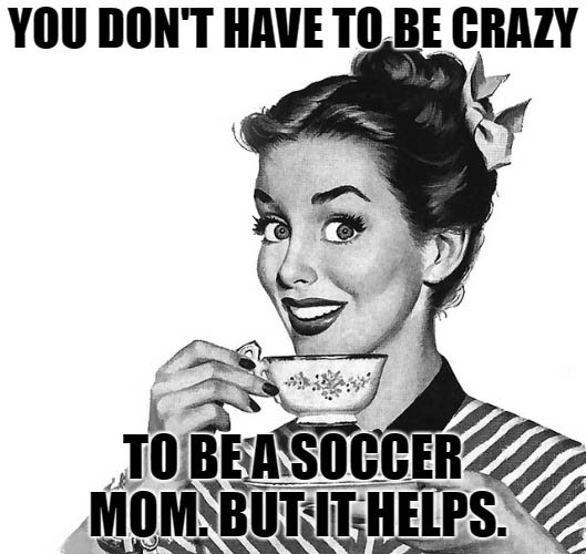 Top 10 Soccer Parent Quotes. Inspiration For Challenged ...